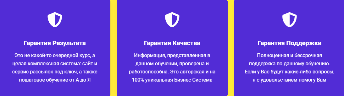 Алейченко Бизнес Система Свое дело в онлайне