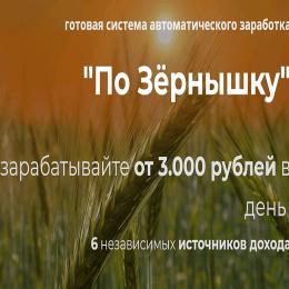 По Зернышку [Проверено] – Отзывы о курсе Александра Писаревского