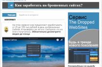 The Dropped WebSites [Лохотрон] — отзывы о методике Александра Громова