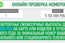 Онлайн проверка номеров [Лохотрон] — отзывы об акции «Уникальный номер»