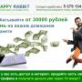 Happy Rabbit [Лохотрон] – отзывы о заработке на продаже трафика