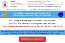 Региональный Центр Единовременных Выплат Населению [Лохотрон] — отзывы о проекте РЦЕВН