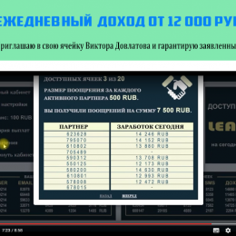 Виктор Довлатов [Лохотрон], Отзывы на ячейку Виктора Довлатова